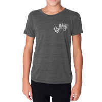 YOUTH - SHORT SLEEVE - TRI-BLEND TSHIRT -  (C-DMD-WT) Thumbnail